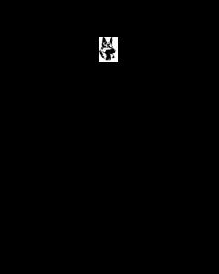 Ergänzungsdeckschein mit Meldekarte