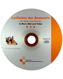 CD - Leitfaden der Anatomie