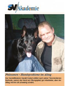 Phänomen-Hundeprobleme im Alltag