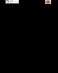 "Richterblatt ""RH1"" Fläche, Trümmer"